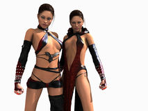 Mage sisters. 3D illustration of two mage sisters isolated on white Stock Photos