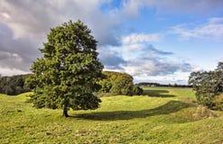 Magelund tidiga medeltida Mounds, Arkivbild