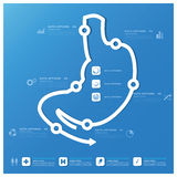Magen-Form-Geschäft und medizinische Infographic-Design-Schablone Stockfoto