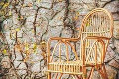 magenta осени астр много пинк настроения Плетеный стул стоит в парке осени Стоковое Изображение