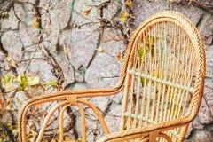 magenta осени астр много пинк настроения Плетеный стул стоит в парке осени Стоковые Изображения RF
