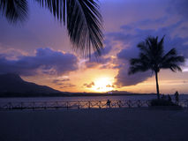 Magenta Caribbean Sunset. Magenta sunset at the Caribbean beach Royalty Free Stock Photos