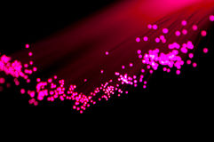 Magenta Fiber Optics Royalty Free Stock Photography