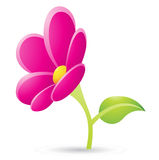 Magenta Flower Icon Royalty Free Stock Image