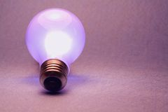 Magenta Light Bulb. A shot of a glowing light bulb Royalty Free Stock Image