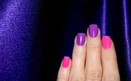 Magenta menchii manicure Fotografia Royalty Free