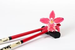 Magenta orchid and chopsticks. Beautiful magenta orchid on chopstick over white paper background with copyspace Stock Photos