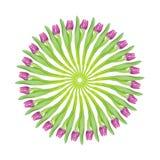 Magenta roze tulpen cirkelcollage vector illustratie