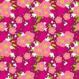 Magenta wiosny kreskowa sztuka kwitnie wektoru wzór Obraz Stock