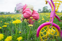 Magentarote Farbe scherzt Dreirad mit gelben Rädern und kleinen dem Kleinkindmädchen, die Löwenzahnblumen an der Frühlingswiese s Stockbilder