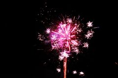 Magentarote rosa Feuerwerke lokalisiert auf einem dunklen Nachthintergrund lizenzfreie stockfotos