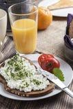 Mager frukost för sund vårsommar Royaltyfri Bild