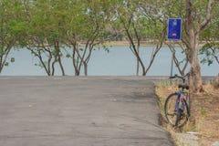 Magerer Baum des Fahrrades nahe Fahrradweg Lizenzfreie Stockfotos