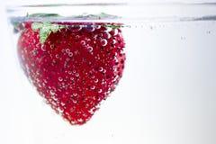 Magert doppa för jordgubbe i mousserande vatten royaltyfri foto