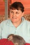 Maggior Bilby - marsupiale indigeno australiano Fotografia Stock