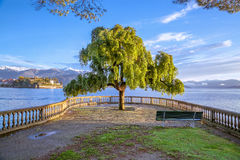 maggiore för bellaisolaitaly lake Arkivfoto