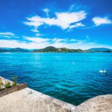 Maggiore lake view from Arona. Swans and Rocca di Angera. Piedmo Royalty Free Stock Image