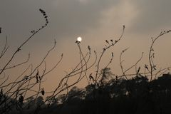 Maghyala India Amerika de V.S. Doubai Karnataka van zonsondergangshillong royalty-vrije stock foto's