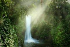 Magia布朗卡瀑布在哥斯达黎加 免版税库存图片