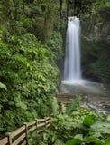 Magia Blanca Catarata vattenfall för vit magi Fotografering för Bildbyråer