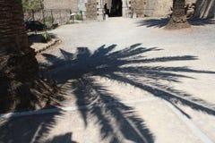 Magia de la sombra Imágenes de archivo libres de regalías