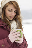 Magia del invierno Imagen de archivo