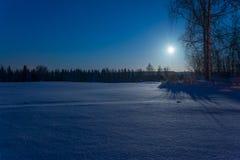 Magia della luna Immagini Stock