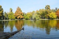 Magia di autunno Fotografie Stock Libere da Diritti