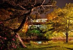 Magia di notte Fotografia Stock