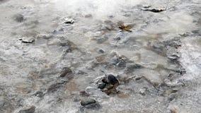 Magia zima Roztapiający lód Płynąć pod lodową wodą zbiory