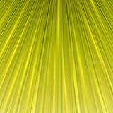 Magic abstract background in yellow color Royalty Free Stock Photography