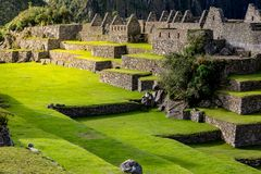 Magic afternoon light touches Machu Picchu stone buildings. In spring stock photos