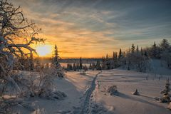 Magic arctic Christmas sunset. Magic arctic Christmas sunset in the far Russian North in high resolution. Perfect for Christmas cards Royalty Free Stock Photos
