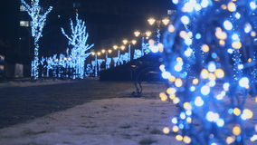 Magic atmosphere in winter park with colorful illumination on trees. Winter park at night with illumination lamps on trees. Camera moves from right to left stock video footage