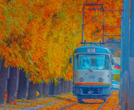 The magic of autumn in Bucharest on tram line 25 royalty free stock images