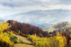 Magic autumn light and foggy mountains in Transylvania Stock Images