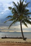 Magic beach under the palm tree Royalty Free Stock Photos