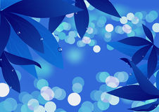 Magic blue leaf Royalty Free Stock Photos