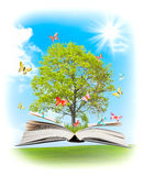 Magic book. Royalty Free Stock Photo