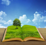 Magic book Stock Photos