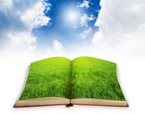 Magic book concept royalty free stock images