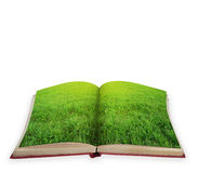 Magic book concept isolated Royalty Free Stock Photo