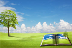 Magic book on the green field Stock Image