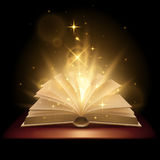 Magic book illustration. In vector Royalty Free Stock Photography