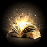Magic book. With magic lights and flying letters Stock Photos
