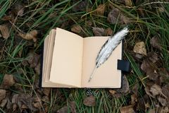 Magic book and silver pen. On grass royalty free stock image