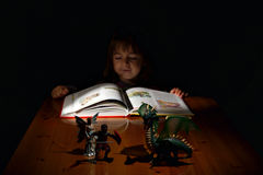 The magic of books: in the land of fantasy Royalty Free Stock Photos
