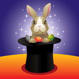 Magic bunny Royalty Free Stock Photos