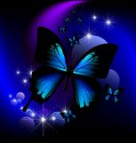 Magic butterfly. Beautiful butterfly on a fantastic background Stock Photos