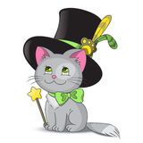 Magic Cat. In the hat Royalty Free Stock Photos